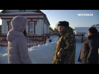Волки в паре километров от Москвы_ Стаи диких животных обитают у домов жителей Подмосковья