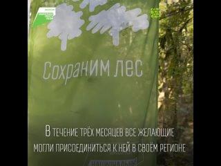 Акция Сохраним лес