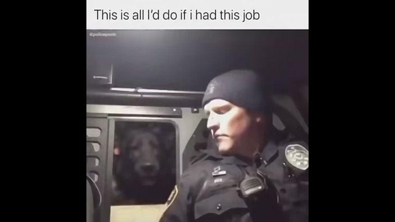 коп и пес