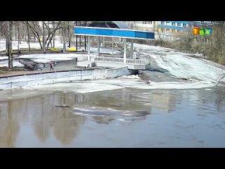 Спасение собаки на льдине Аша