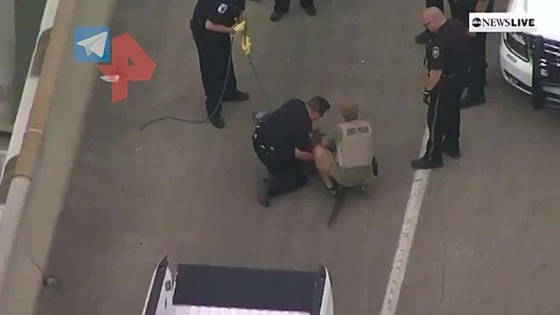 Крокодила арестовали и заковали в наручники в США