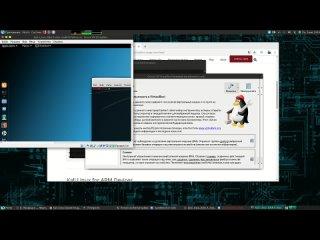 #7 Лаборатория пентестера - Установка Kali Linux в VirtualBox на Parrot Security OS | Timcore