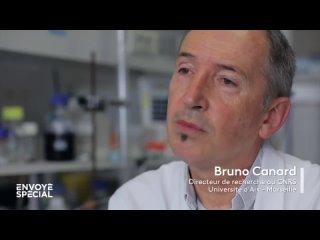 Trois mois avant le début de la pandémie, la base de données de l'Institut de virologie