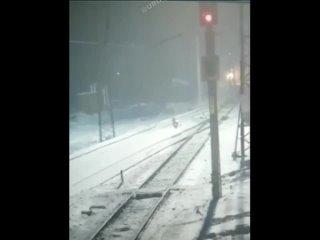 Поезд сбил дочь