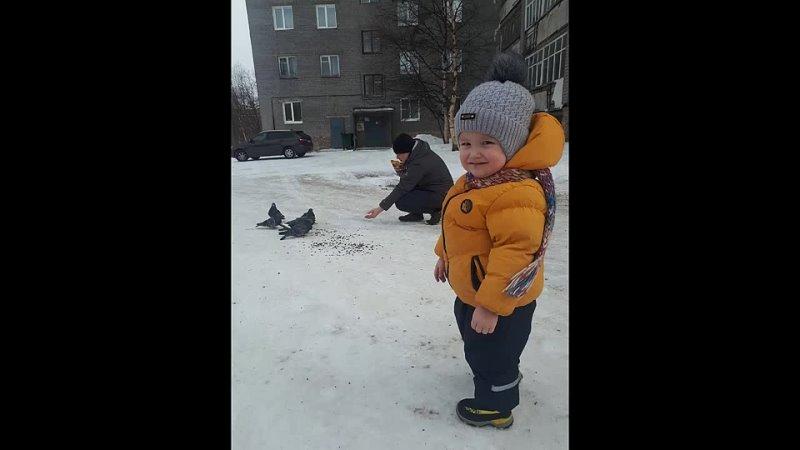 Эко -Акция Птицы в городе!