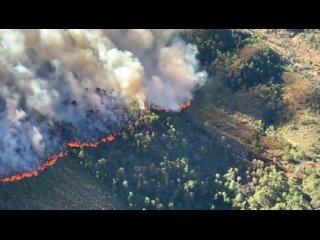 Лесной пожар в Сьерра де Артеага (Мексика, Коауила, март 2021).