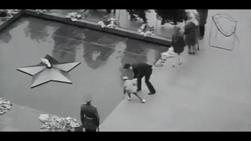 Это документальные кадры начала 70-х. - Вот настоящая память о войне. - Смотрите на ужас и