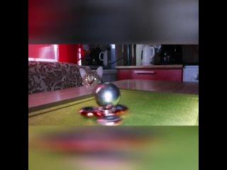"""Кот и спиннер """"кручу, верчу"""" :D"""