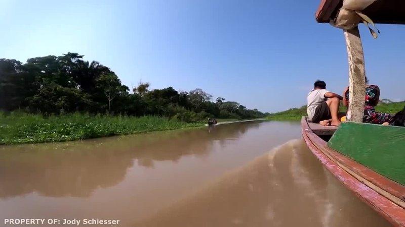 Почему через Амазонку не построили ни одного моста Самая удивительная река на Зе