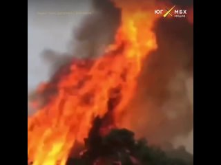 Лес горит в Дагестане