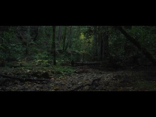 Трейлер фильма Лес призраков: Сатор