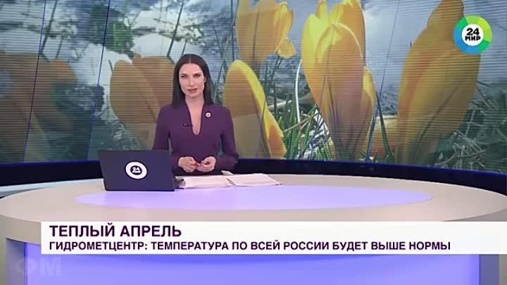 СОБАКА УКРАЛА МИКРОФОН во время прямого эфира выпуска новостей - прикол мем(1).mp4