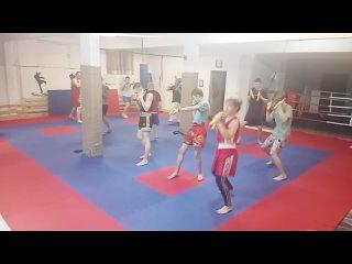 Live: Федерация Тайского бокса Республики Коми