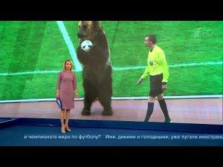 Выступление медведя Тимы из Пятигорского цирка вызвало шквал публикаций в брит.СМИ
