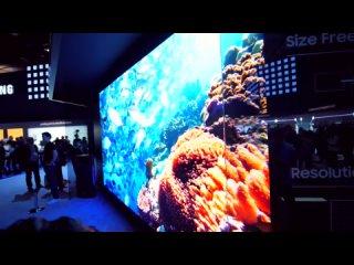 Самый большой телевизор в мире — 219 дюймов! cfvsq ,jkmijq ntktdbpjh d vbht — 219 !