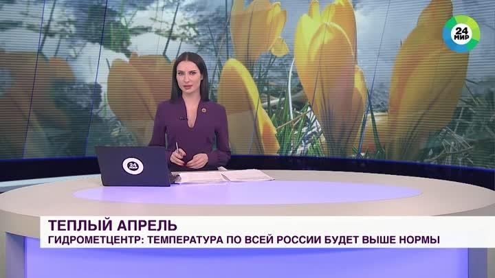 Собака украла микрофон во время прямого эфира выпуска новостей