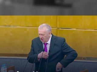 Владимир Жириновский в Государственной думе (480p).mp4
