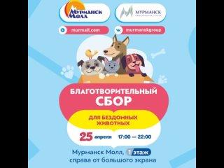 Благотворительный сбор в Мурманск Молле!