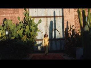 Illumina-Color_Flash_Manifesto-Video