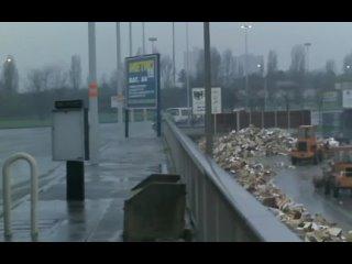 Плевать на смерть (S'en fout la mort, 1990), режиссер Клер Дени. Субтитры.