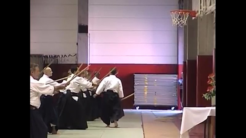 Aikido Christian Tissier 15 08 2011 Wegimont