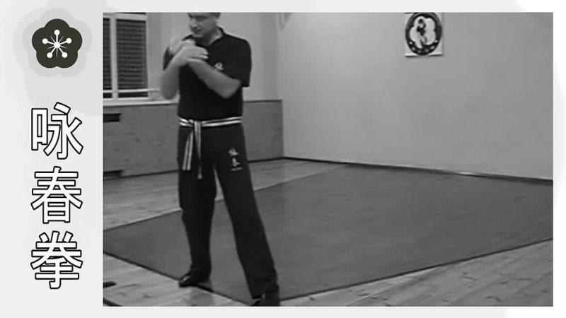 Форма Вин Чун «Чам Киу» в деталях _ Сhum Kiu Wing Chun