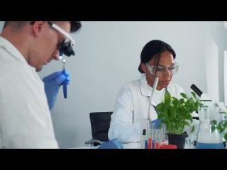 ЧТО НЕ ТАК С ФОТОСИНТЕЗОМ ТОП-7 вопросов к теории газообмена растений