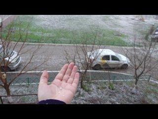 В Курске идет снег 24 апреля 2021 года