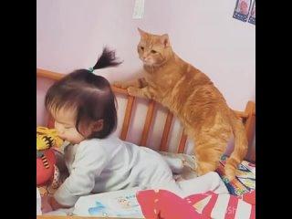 У детей, которые выросли рядом с животными иммунитет крепче!