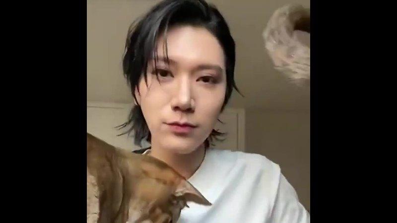Ten censoring his cats