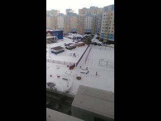 Вот так вот дворовые собаки веселятся на Салмышской, 72 . Мужика взрослого чуть не съели..