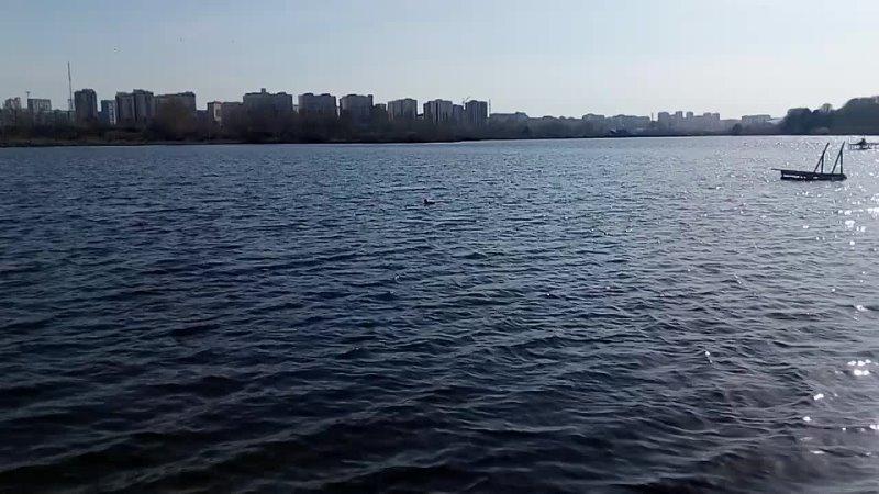 Прогулка у дома Озеро VID 20210506 171733