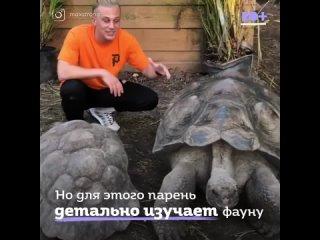 Парень дружит с дикими животными.