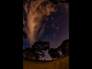 Звездная ночь. 2021-03-08