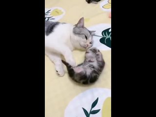 Мама рядом, спи спокойно
