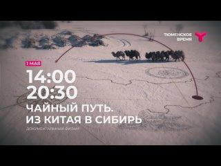 Анонс документального фильма «Чайный путь»