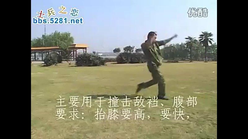 Chinese Kung fu Sanda military training
