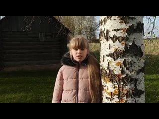 школа 338 Дарья Наумова
