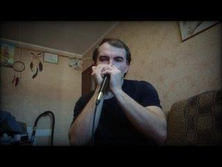 Человек-оркестр (губные гармошки)
