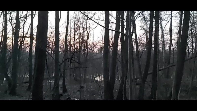 Борис Рассветов поёт песню Кружева группы Ремонт воды