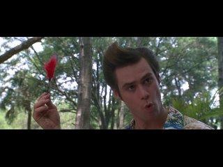 Эйс Вентура 2: Когда зовёт природа / Ace Ventura: When Nature Calls.
