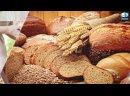 Основы правильного питания – советы диетолога Навигатор здоровья