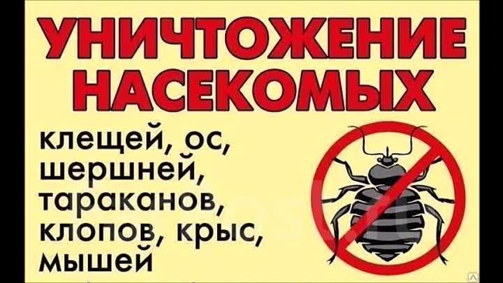 Отпугиватель тараканов клопов мух ультразвуковой Цунами универсал