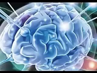 Мозг во время молитвы.