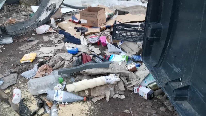 Краснозаводские успехи в мусорной реформе