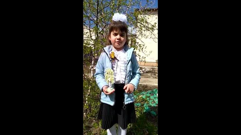 Димитрова София Константиновна 5 лет МКДОУ ЦРР детский сад
