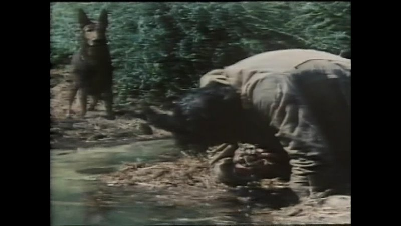 По следам беглеца Испания 1977 триллер Джейсон Милллер Леа Массари советский дубляж