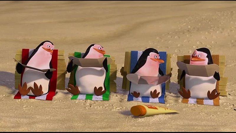 Улыбаемся и машем парни Пингвины из Мадагаскара для ВП