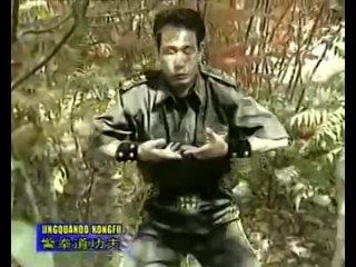 Chinese Police Martial Arts Training - Iron shirt qi qong