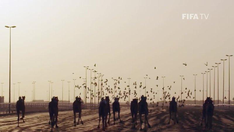 FIFA World Cup Qatar 2022 Magazine Show Episode 4